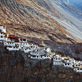 The Diskit Monastey in Ladakh by Arunjeet Banerjee - Buildings & Architecture Places of Worship ( diskit monastery, barren landsacpe, monastery, india, travel, ladakh, evening, travel photography )