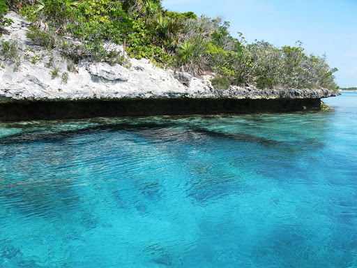 Go swimming in the clear waters along the Bahamas shoreline.