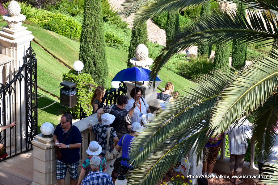 Экскурсия в Бахайских садах. Гид Светлана Фиалкова