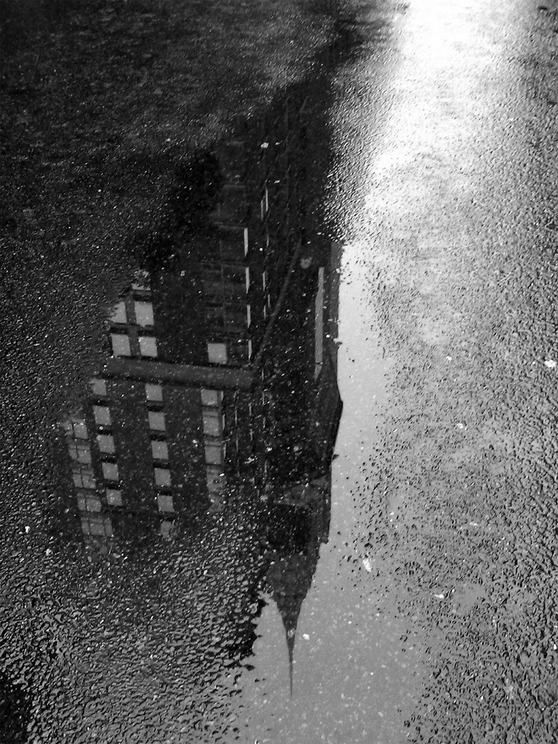 un giorno di pioggia di ELISABETTA RIZZO