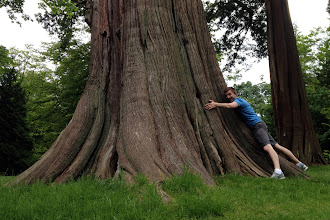 Photo: Brock loves Vancouver's trees!