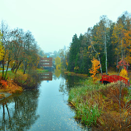 Lillestrøm  by Hemin Ahmed - Nature Up Close Other Natural Objects ( sky, water, trees )