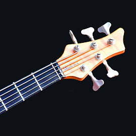 Well Adjusted ! by Marco Bertamé - Artistic Objects Musical Instruments ( music, string, guitar )