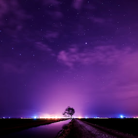 Sekinchan Night by Reeve Lim - Landscapes Starscapes