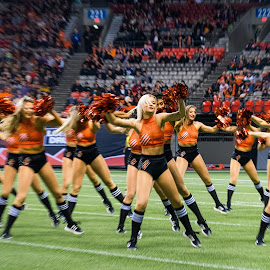 Giving It All by Garry Dosa - Sports & Fitness American and Canadian football ( cheerleading, sports, teams, females, cheerleaders, players, cfl, blur, football, people, indoors, stadium, action, movement )