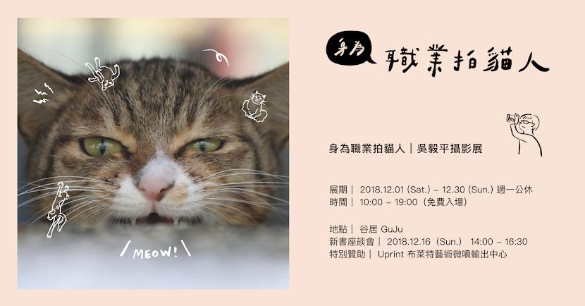 【身為職業拍貓人|吳毅平攝影展】 用時間等待每一個奇蹟的瞬間