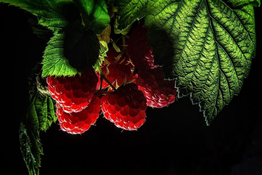 Juicy Fruit by Andy Staniszewski - Food & Drink Fruits & Vegetables ( raspberries fruit raspberry )