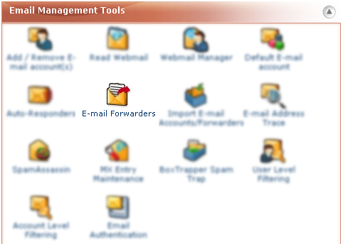 Email Management Tools