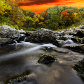 Water and rocks... by Fabrizio Contadini - Nature Up Close Water ( lights, water, nature, autumn, colors, sunset, three, forest, rocks,  )