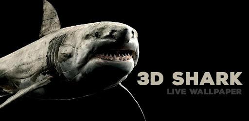 Shark 3d Live Wallpaper Apps En Google Play