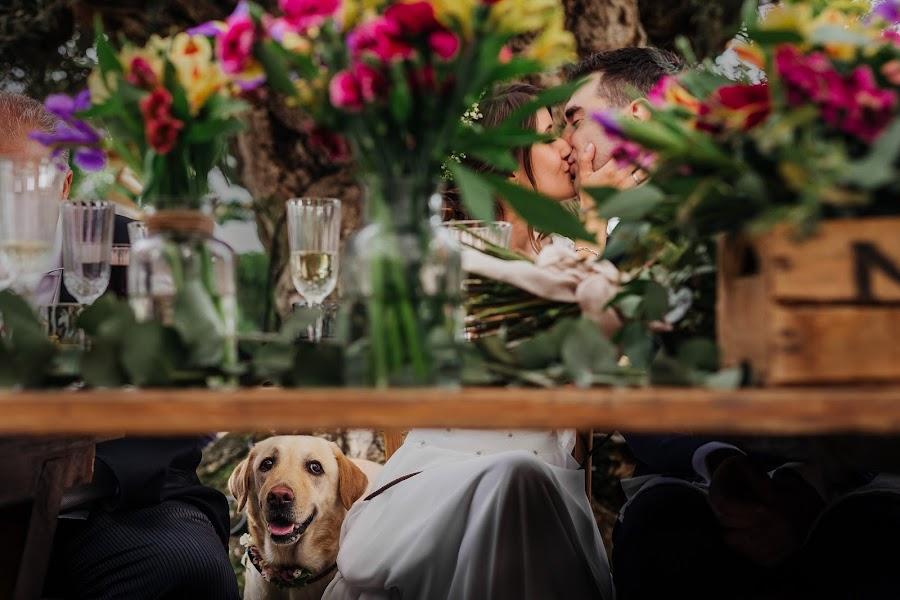 Wedding photographer Aga Bacal (agabacal). Photo of 15.02.2017