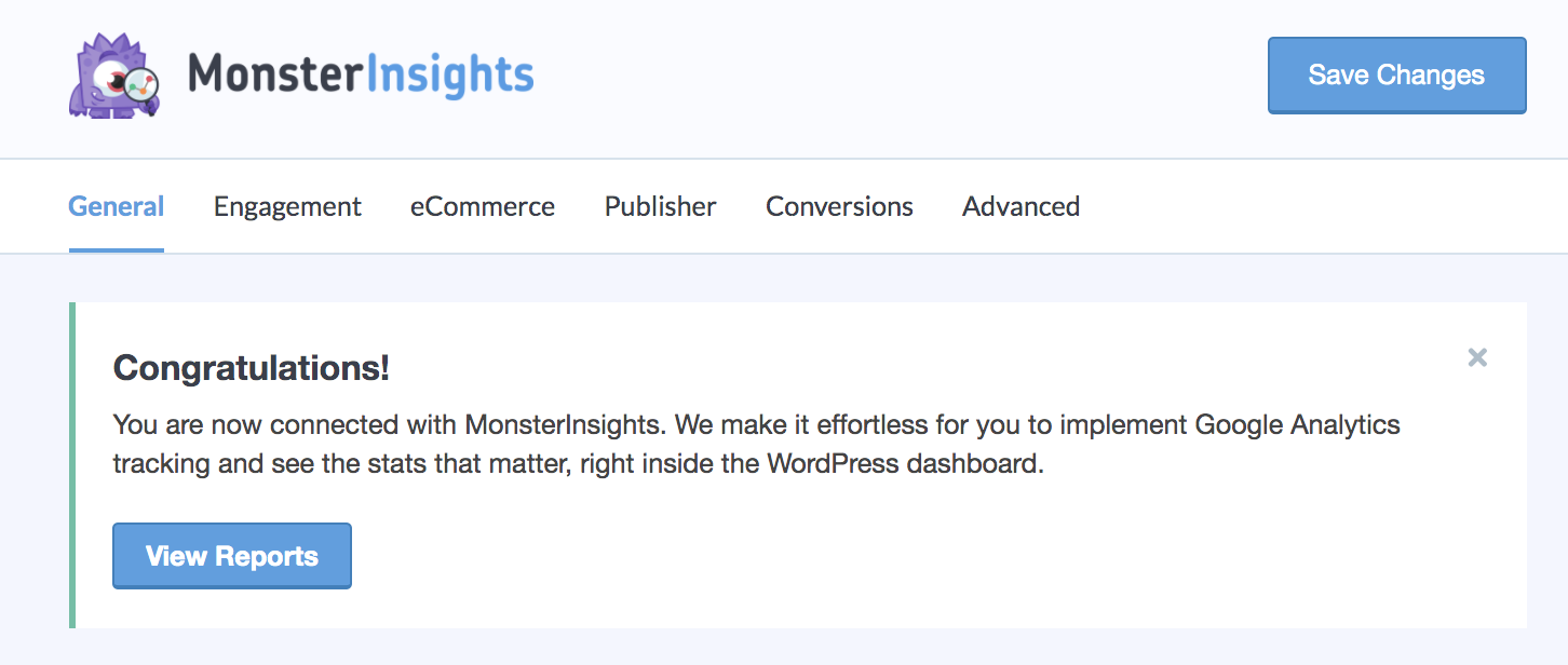 MonsterInsights reports on WordPress dashboard