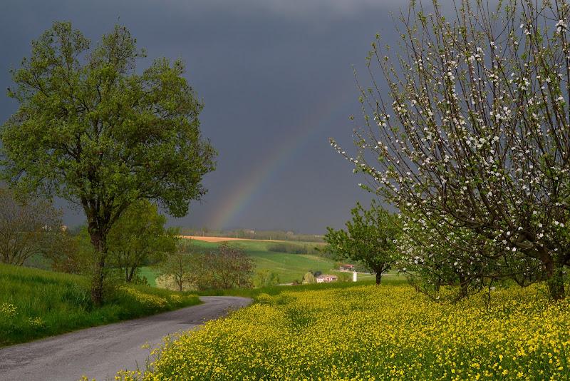 la fine del temporale di elena_magnani