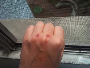 Photo: Nudillos. Roto correspondiente en el guante :(