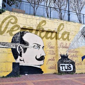 Penkala by Slaven Bandur - City,  Street & Park  Street Scenes ( croatia, art, color, painted, street, stairs, zagreb, wall )