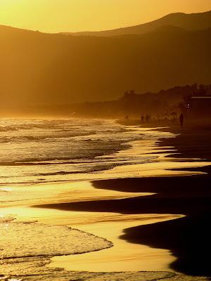 In the land of golden waves di Elisabetta Di Girolamo
