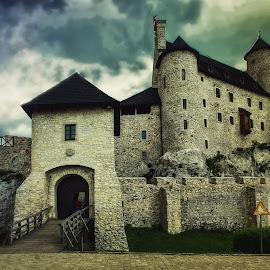 castle by Tomasz Marciniak - Buildings & Architecture Public & Historical ( old, castle )