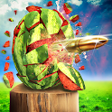 Watermelon Shooting 3D icon