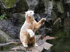 Photo: Hallo, ich warte ;-)