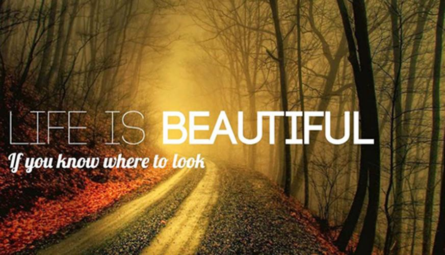 Quotes Photo Gallery Full 2018 APK 1 0 2 Download - Free Photography