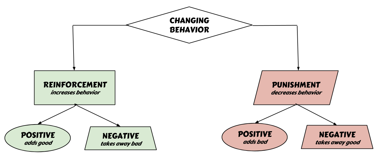 Copy of Decision Structures (1).png