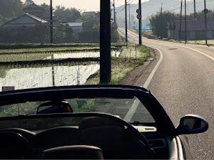 335i Cabriolet  2009年中期型のカスタム事例画像 カブリ寄りさんの2019年12月10日22:35の投稿