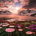 Belas paisagens b icon