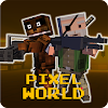 Pixel Z World 3D -Gun & Gunner