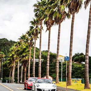 911 991H2 carrera S cabrioletのカスタム事例画像 Paneraorさんの2020年08月29日08:21の投稿