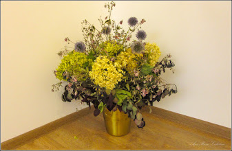 Photo: Turda, Str. Libertatii, Galeria de Arta, aranjament floral, Hortensie (Hydrangea) - 2019.08.07