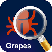 MyPestGuide Grapes