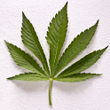 Weed Wallpapers and Pictures icon