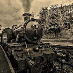by Derek Tomkins - Transportation Trains