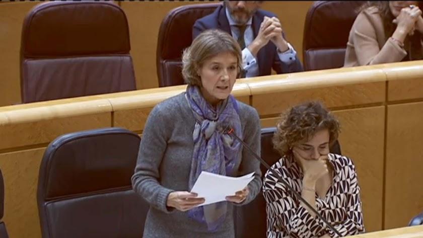 La ministra en su comparecencia ayer en el Senado
