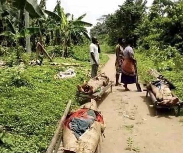 Suspected cultists storm Luebe Community in Khana Local Government Area killing over 10 youths.