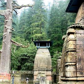 by Soutik Halder - Buildings & Architecture Places of Worship ( shivlinga, india, kumaon, jageshwar, pristine,  )
