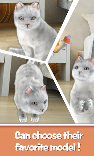 かわいい猫を話します