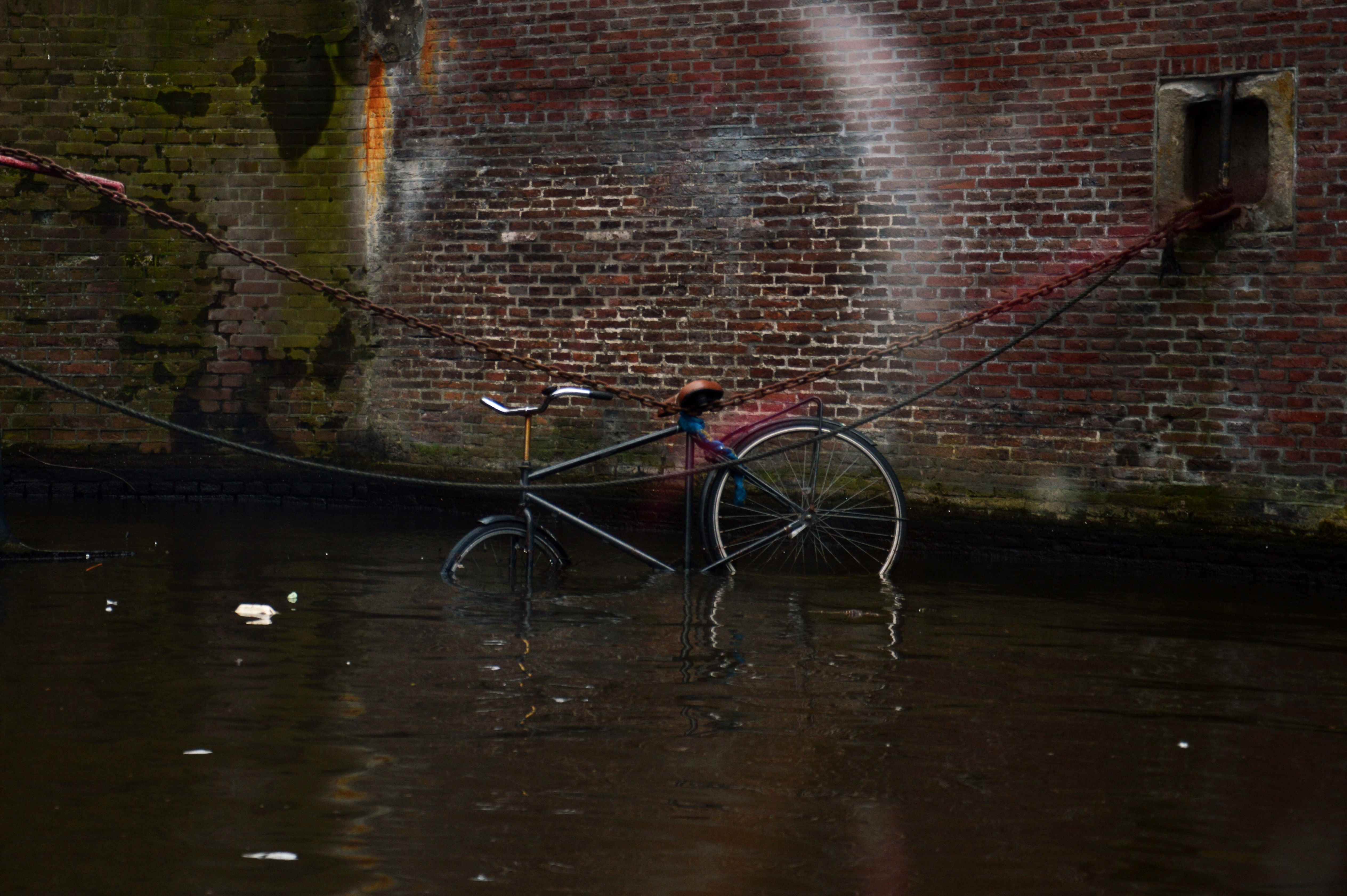 pedalando in bicicletta di tatiana morello