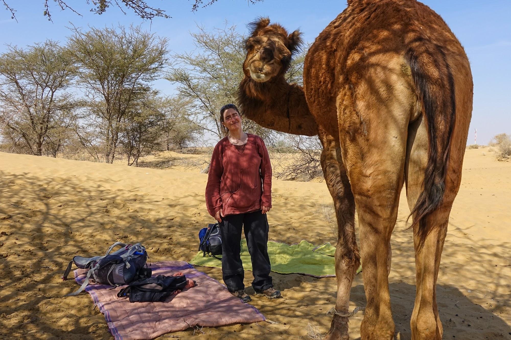 A Fantastic 3 Day Camel Trek In The Thar Desert Rajasthan
