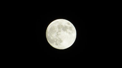 Photo: Yay! I stopped breathing long enough to get a clear shot of that BIG moon!