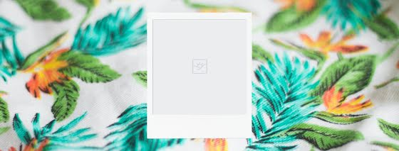 Blank Floral Polaroid - Facebook Page Cover Template