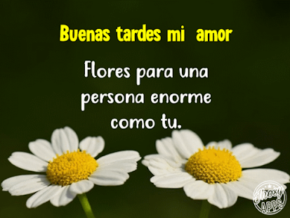 Feliz Tarde Mi Amor Frases De Buenas Tardes Apk Descargar