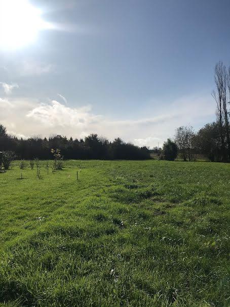 Vente terrain à batir  599 m² à Martillac (33650), 225 000 €