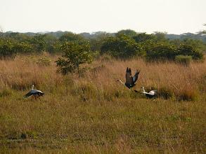 Photo: Národní park Blue Lagoon / Blue lagoon NP