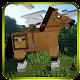 Super Craft Horse Run