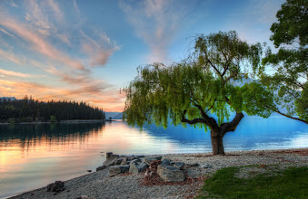 Photo: Tree at the Serene Lake - New Zealand  When I was there in Queenstown, I took to waking up about an hour before the sunrise and brewing a whole pot of coffee. And then, I would just the take the POT in the car with me and drive around. The lake can be pretty still in the morning, and that is when I grabbed this one... I'm jealous of my friends Gordon Laing and Eden Brackstone who get to spend almost every day in these environs!   from the blog www.stuckincustoms.com