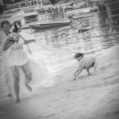 Wedding photographer Rodolphe Lamare (moricien). Photo of 01.01.1970