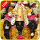 Download BALAJI Chimur LIVE For PC Windows and Mac