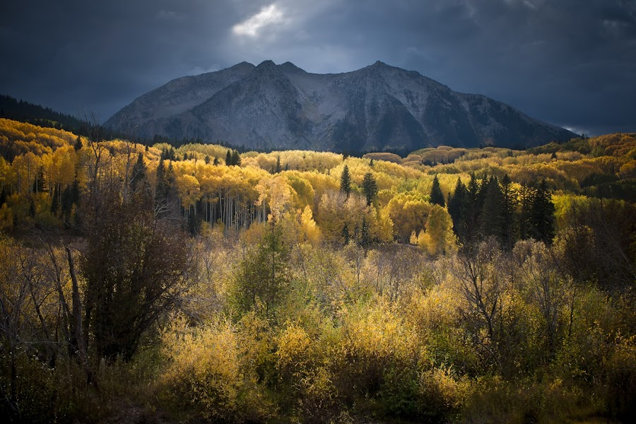 As played before the Mountain King by Michael VanBeber - Landscapes Mountains & Hills ( wilderness, mountains, color, sunset, fall, medicine walk photography, colorado, trees, michael van beber, #GARYFONGDRAMATICLIGHT, #WTFBOBDAVIS )
