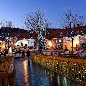Samobor, Croatia by Andjela Miljan - Public Holidays Christmas
